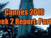 Cannes 2016 Week Report: Part