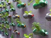 Ways Recycle Transform Empty Plastic Bottles