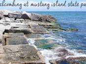 Beachcombing Mustang Island State Park