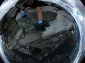 Video: Yosemite Half Dome 360º