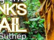 Hiking Monk's Trail Suthep