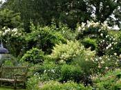 Suffolk Essex Garden Tour