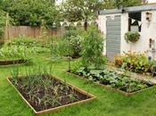 June Peek Garden