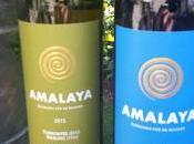 """Wines Altitude"" with Salta's Amalaya Wines"