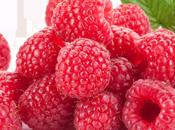 Berry Yogurt Sorbet….