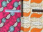 Stunning Reissues Chimamanda Ngozi Adichie's Books