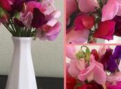 Vase Monday