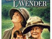 Ladies Lavender