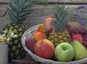 Fruit Diet Experience