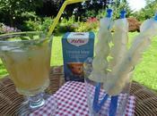 Refreshing Iced Lolly Sugarfree Recipe