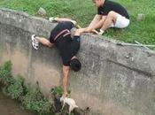 Being Kind Animals