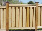 Panel Privacy Fencing Ideas