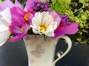 Vase Monday Cheerful Cosmos
