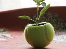 Things Make With Tennis Balls