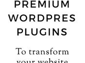 Premium WordPress Plugins Transform Your Site