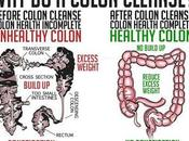 Colon Cleansing Important Before Drops Diet