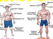 Learn Boost Testosterone