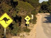 3-Day Itinerary Kangaroo Island, South Australia