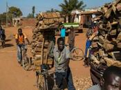 Malawi: Population Growth Amid Poverty, Drought Felled Trees