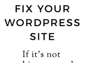 WordPress Problems: Your Site It's Working