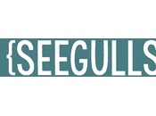 Review: Seegulls Seegulls. Explosive, Enthusiastic Energetic Debut Full Spirit