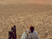 Pals Praia Memória