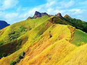 Newbie-Friendly Hiking Trails Philippines
