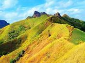 Newbie-Friendly Hiking Trails Philippines