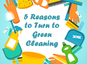 Reasons Turn Green Cleaning