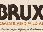 Brux Domesticated Wild Russian River Sierra Nevada Brewing Collaboration) Bottle 9/3/2016