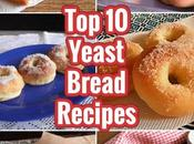 Yeast Bread Recipes