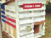 Repurposed Things Turned Into Chicken Coops