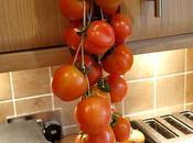 Tomates Colgar