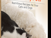 FREEBIE: Healthy Homemade Treats Your Cats Dogs