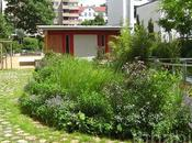 Tips More Sustainable Garden