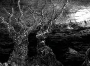 SWAMP WITCH: Slithering From Oppressive Death Doom Collective Streaming Decibel; Record Vinyl Tribunal