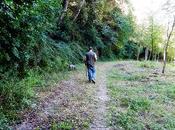 Truffle Hunting Tuscany