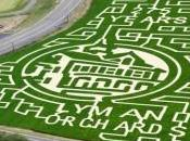 Lyman Orchard Corn Maze