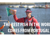 Best Fish World Comes from Portugal