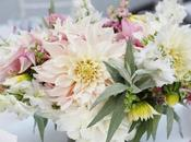 Summer Wedding Full Blush Dahlias