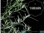 Herb With Tarragon