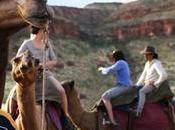 Aboriginal Experiences Western Australia
