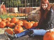 Pumpkins Queens Country Farm Museum