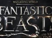 Fantastic Beasts Where Find Them *Spoler Free*