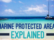 Marine Protected Areas Explained