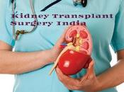 Kidney TransplantIndia Procedure, Packages Medical Assistance