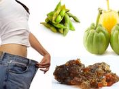 Natural Ayurvedic Medicine Weight Loss Lose Naturally