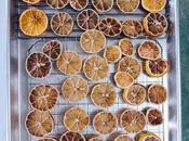 Oven Dehydrated Citrus Holiday Decorating