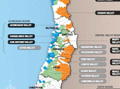 Wines Chile Snooth Present Carmenère Master Class