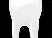 FFS!? Friday Tooth Fairy